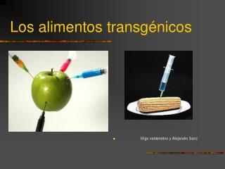 Los alimentos transg�nicos