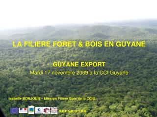 LA FILIERE FORET & BOIS EN GUYANE GUYANE EXPORT Mardi 17 novembre 2009 à la CCI Guyane