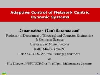 Adaptive Control of Network Centric Dynamic Systems