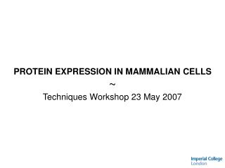 PROTEIN EXPRESSION IN MAMMALIAN CELLS  Techniques Workshop 23 May 2007