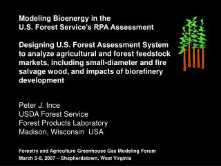 Modeling Bioenergy in the  U.S. Forest Service's RPA Assessment