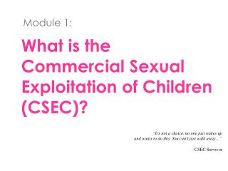 What is the Commercial Sexual Exploitation of Children (CSEC)?