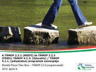 Borbély-Pecze Tibor Bors – TÁMOP 2.2.2 programvezető