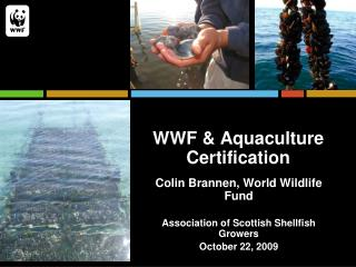 WWF & Aquaculture Certification