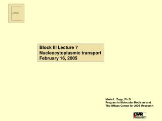 Block III Lecture 7 Nucleocytoplasmic transport February 16, 2005