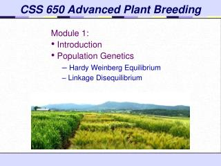 CSS 650 Advanced Plant Breeding