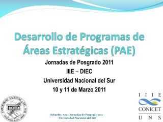 Desarrollo de Programas de Áreas Estratégicas (PAE)