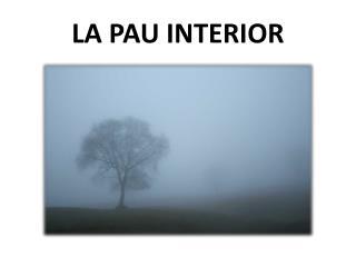 LA PAU INTERIOR