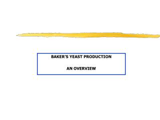 BAKER'S YEAST PRODUCTION AN OVERVIEW