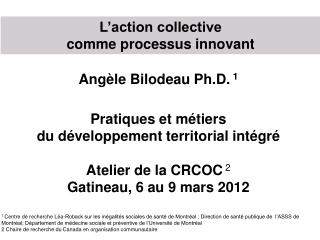 L'action collective  comme processus innovant