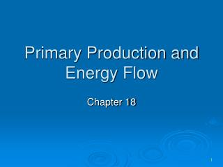 Primary Production and Energy Flow