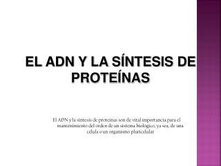 EL ADN Y LA SÍNTESIS DE PROTEÍNAS