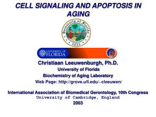 CELL SIGNALING AND APOPTOSIS IN AGING      Christiaan Leeuwenburgh, Ph.D.   University of Florida  Biochemistry of Aging