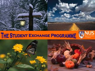 The Student Exchange Programme