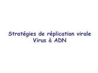 Strat�gies de r�plication virale Virus � ADN