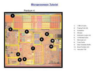 1 MB L2 Cache Floating Point Unit Schedulers Allocator Arithmetic & Logic Unit 16 KB Data Cache