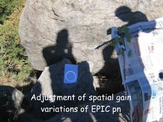 Adjustment of spatial gain variations of EPIC pn