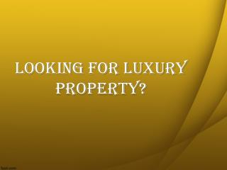 Looking For Luxury Property in Miami Beach Florida?