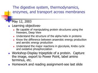 The digestive system, thermodynamics, enzymes, and transport across membranes