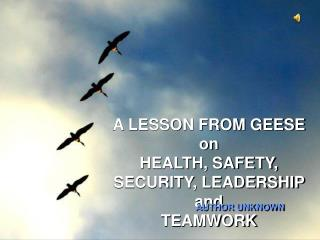 A LESSON FROM GEESE on HEALTH, SAFETY, SECURITY, LEADERSHIP and TEAMWORK