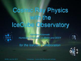 Cosmic Ray Physics  with the   IceCube  Observatory