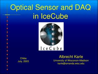Optical Sensor and DAQ in IceCube