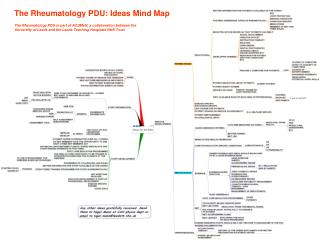 The Rheumatology PDU: Ideas Mind Map