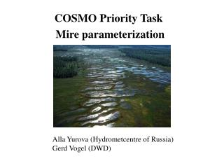 COSMO Priority Task  Mire parameterization
