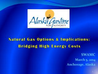 Natural Gas Options & Implications: Bridging High Energy Costs