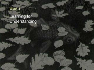 Learning for Understanding
