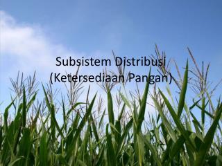 Subsistem Distribusi  (Ketersediaan Pangan)