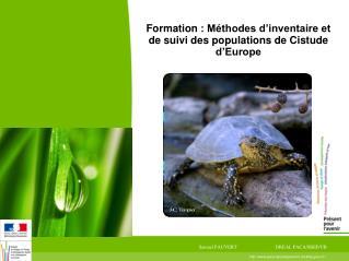 Formation: Méthodes d'inventaire et de suivi des populations de Cistude d'Europe