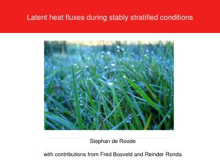 Latent heat fluxes during stably stratified conditions