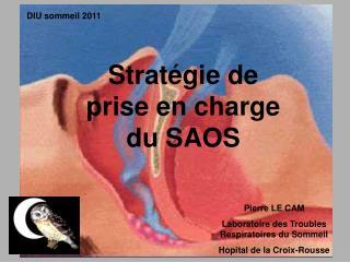 Stratégie de prise en charge du SAOS