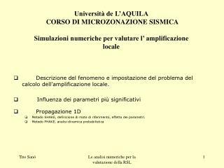 Descrizione del fenomeno e impostazione del problema del calcolo dell'amplificazione locale.