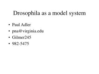Drosophila as a model system