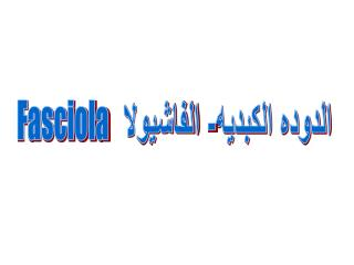 الدوده الكبديه- الفاشيولا   Fasciola