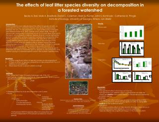 The effects of leaf litter species diversity on decomposition in  a forested watershed
