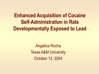 Enhanced Acquisition of Cocaine Self-Administration in Rats Developmentally Exposed to Lead