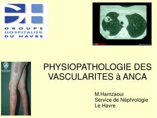 PHYSIOPATHOLOGIE DES  VASCULARITES à ANCA