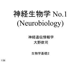神経生物学  No.1 (Neurobiology)