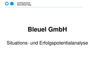 Bleuel GmbH Situations- und Erfolgspotentialanalyse