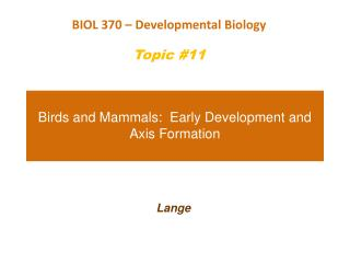 Birds and Mammals:  Early Development and Axis Formation
