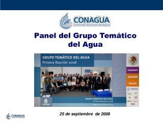 Panel del Grupo Temático  del Agua