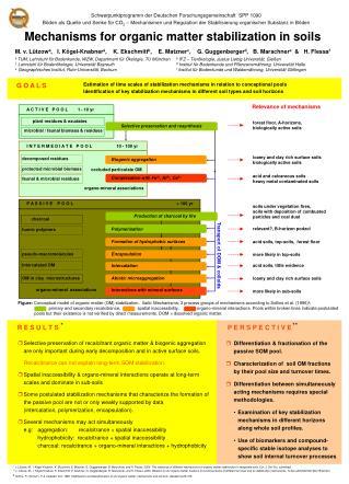 Mechanisms for organic matter stabilization in soils