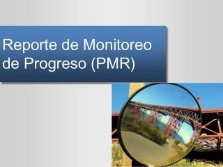 Reporte de Monitoreo de Progreso (PMR)