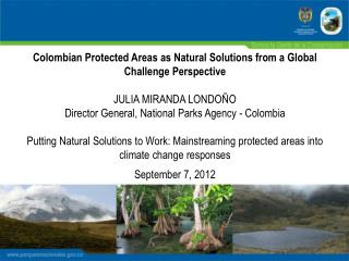 Colombian Protected Areas as Natural Solutions from a Global Challenge Perspective