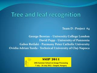 Tree and leaf recognition
