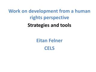 Work on development from a human rights perspective  Strategies and tools Eitan Felner CELS