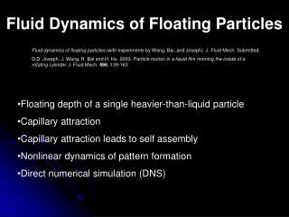 Fluid Dynamics of Floating Particles